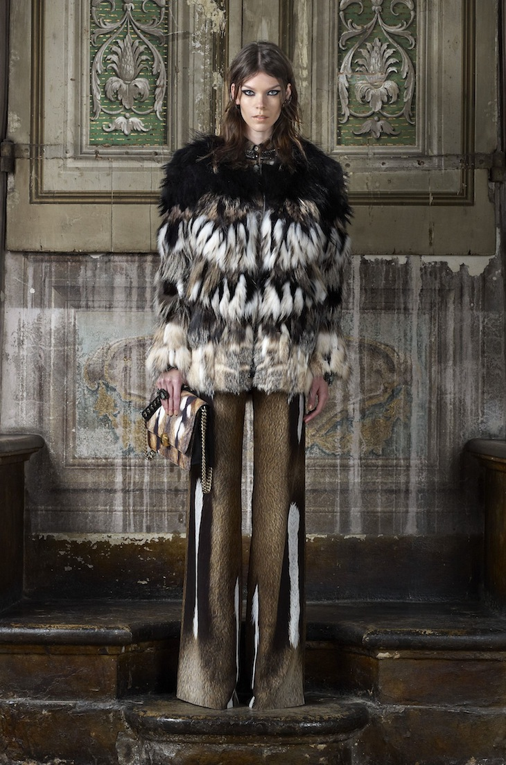 Roberto Cavalli Pre-collection FW 2013-14 (1)