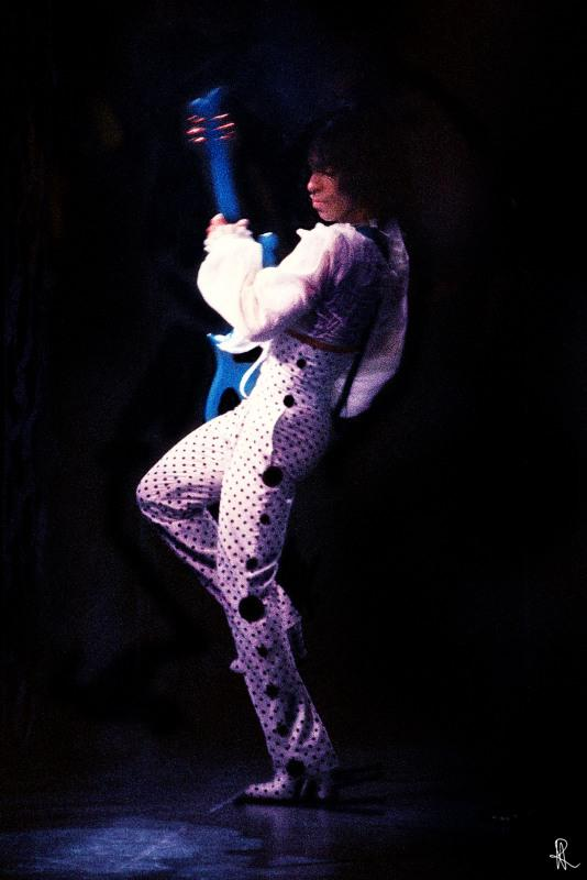Prince 1988