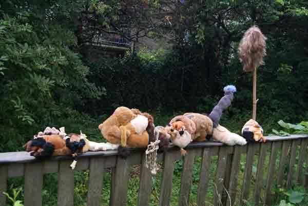 vreemd, vreemde, beesten, raar, beest, robert, pennekamp, raar, beest, stuffed, animal, textiel, vreemd, gevonden, speelgoed, opgezet, knuffel,