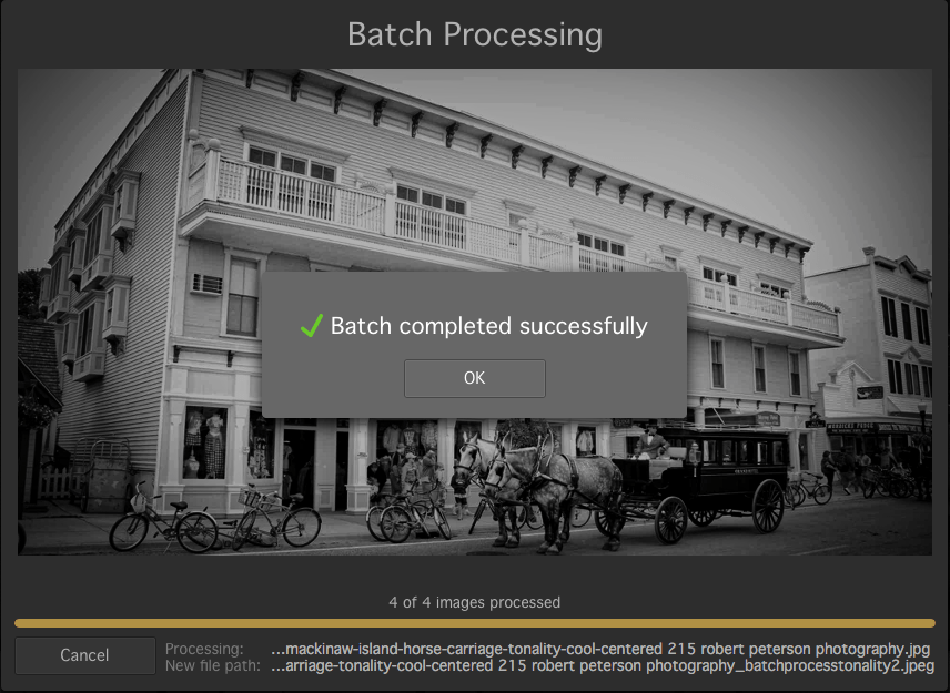 Macphun Tonality batch processing completed screen