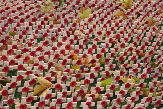 Tributes in the Garden of Remembrance, Westminster Abbey, London. 11.11.2008