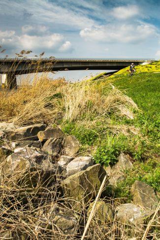 Renner bij Stichtse brug