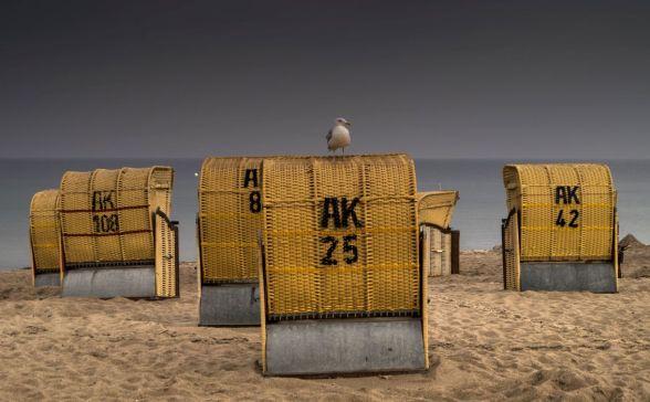 Zeemeeuw op strandstoel op Dahme's Strand