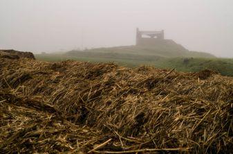 Biezenburcht bij mist, Knardijk, Zeewolde