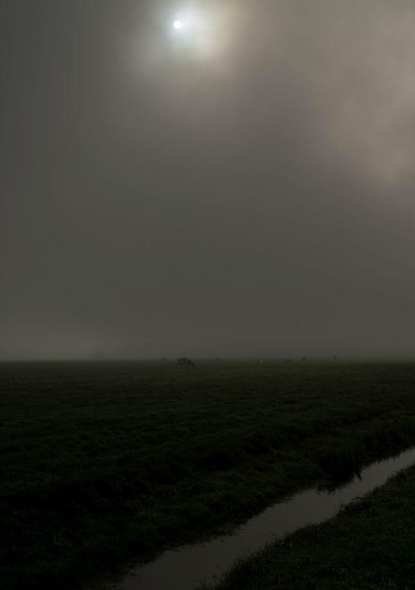 Arkemheense polder, Putten