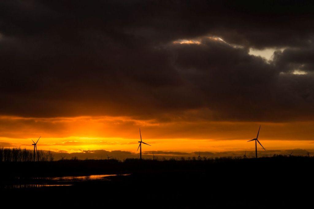 Zonsondergang Horsterwold, Zeewolde 30 december 2014
