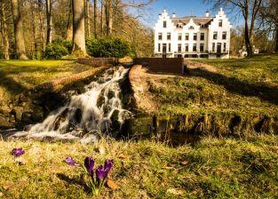 Lente in Landgoed Staverden, krokussen