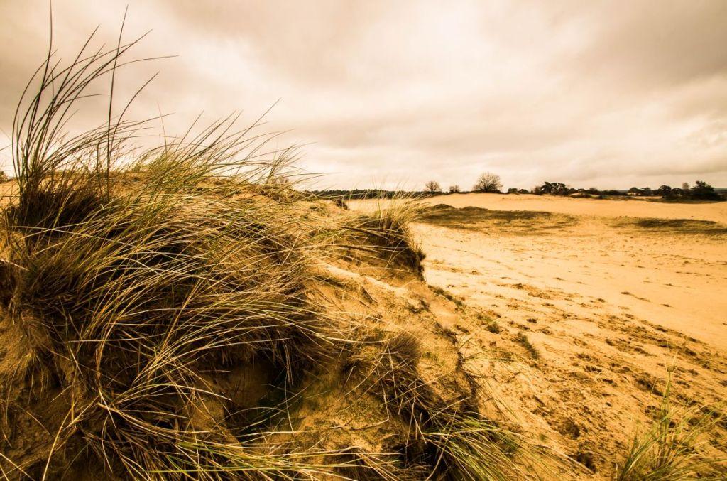 Kootwijkerzand, zandverstuivingen