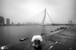 RST_Rotterdam met Paul-11 februari 2017-3 (Custom)