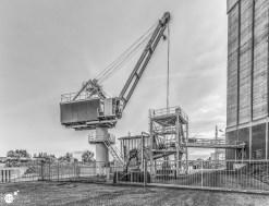 RST_Rijnhaven_uiterwaarden-09 mei 2017-2