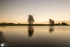 RST_Rijnhaven_uiterwaarden-09 mei 2017-6