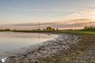 RST_Rijnhaven_uiterwaarden-09 mei 2017-9