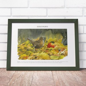 Signed Print Blackbird