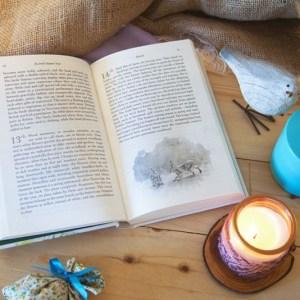 book_An_Irish_Nature_Year__robertvaughanillustrations