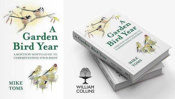 A_Garden_Bird_Year_Mike_Toms