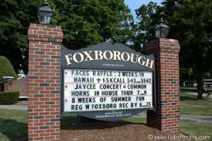 Foxboro - Foxboro Lions Sign