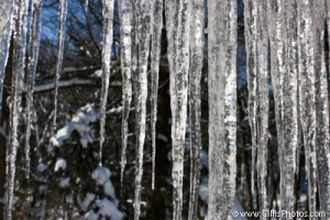 Winter - Icicles