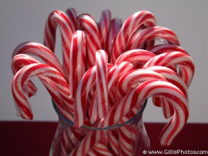 Christmas Still Life - Candy canes