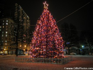 Boston Common Christmas 2005