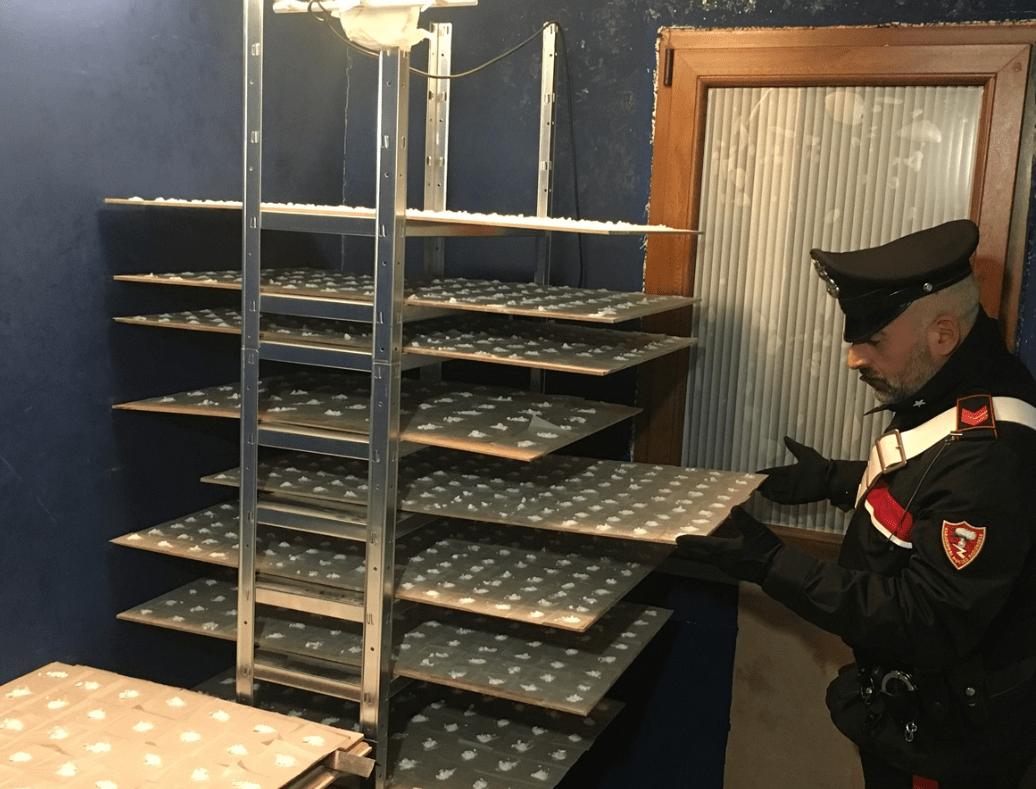 Da Milano in Calabria con ovuli di cocaina, un arresto