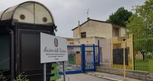 Ripacandida, 23enne coltivava droga, arrestato dai Carabinieri