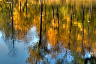Beaver Pond Reflections, Gatineau Park, Quebec.