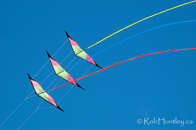 The 2011 Windscape Kite Festival in Swift Current, Saskatchewan.