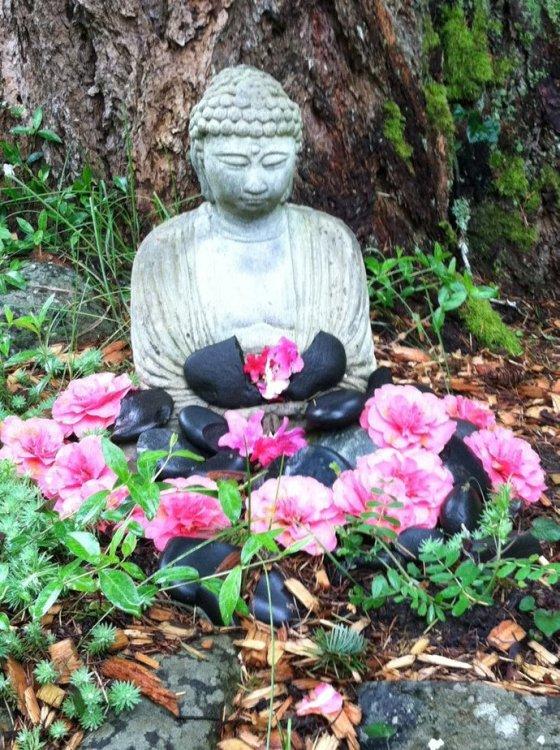 Still meadow buddha