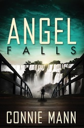 Angel Falls by Connie Mann.jpg