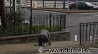 Sclavia alcoolului în UK, exemplu