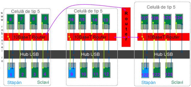 Ghirlandă de celule super-computaționale conectate într-o structură cu 127 de noduri conectate pe un singur hub USB, cu nodurile grupate câte 8 într-o celulă (mai puțin ultima, în care sunt doar 7 noduri)