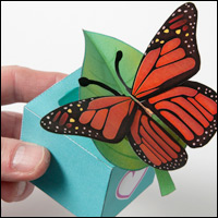 butterfly200.jpg