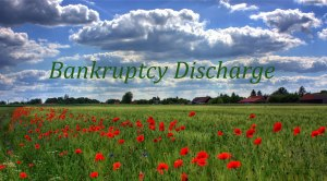 Open field of bankruptcy discharge