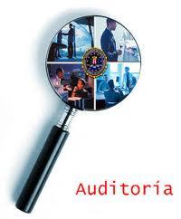 informe de auditores independientes estados financieros