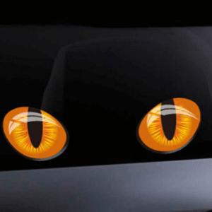 Aufkleber für Rasenroboter- Augen Bild 5 (Katze)