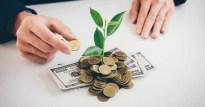Grünes Investment: Ein einfacher 10-Punkte-Guide