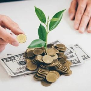 Grünes Investment - ein 10 Punkte Guide für Anleger