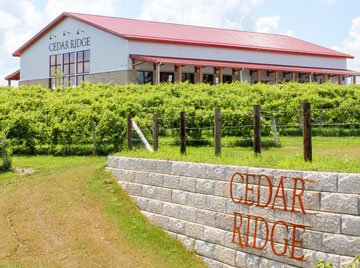 Cedar Ridge Winery and Distillery makes a Port Cask finished five year old limited edition aged rum