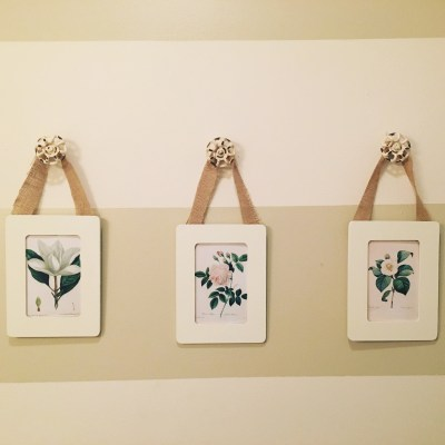 Quick DIY Botanical Print Project