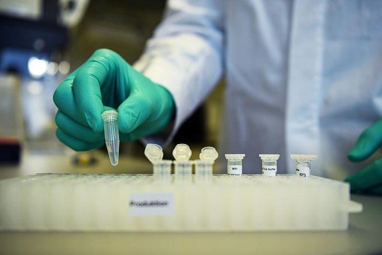 Roca superó los 6 mil pacientes recuperados de Coronavirus