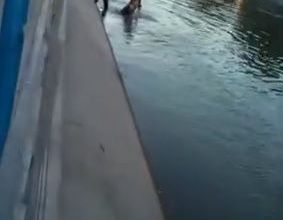 Una mujer se tiró al canal grande y la policía tuvo que rescatarla
