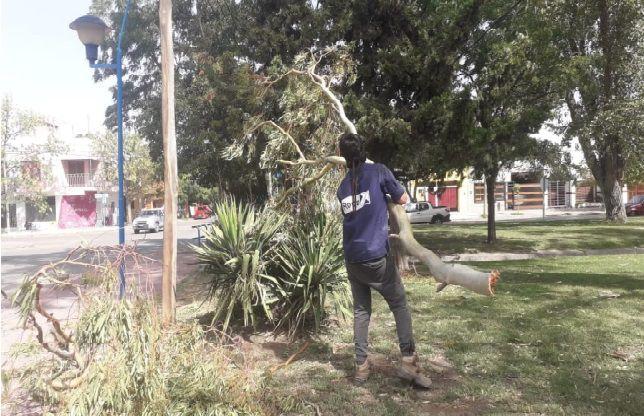 El Municipio asistió a vecinos y diversos sectores de la ciudad por los fuertes vientos