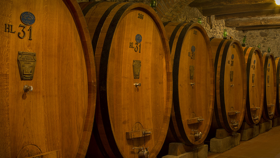 Tours and wine tastings