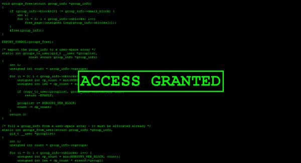 HackerType-Access-Granted copia