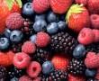 Cáncer mamario : Información sobre sus características y tratamientos de las medicinas alopática y natural
