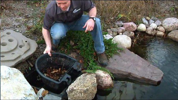 Garden Pond Skimmer