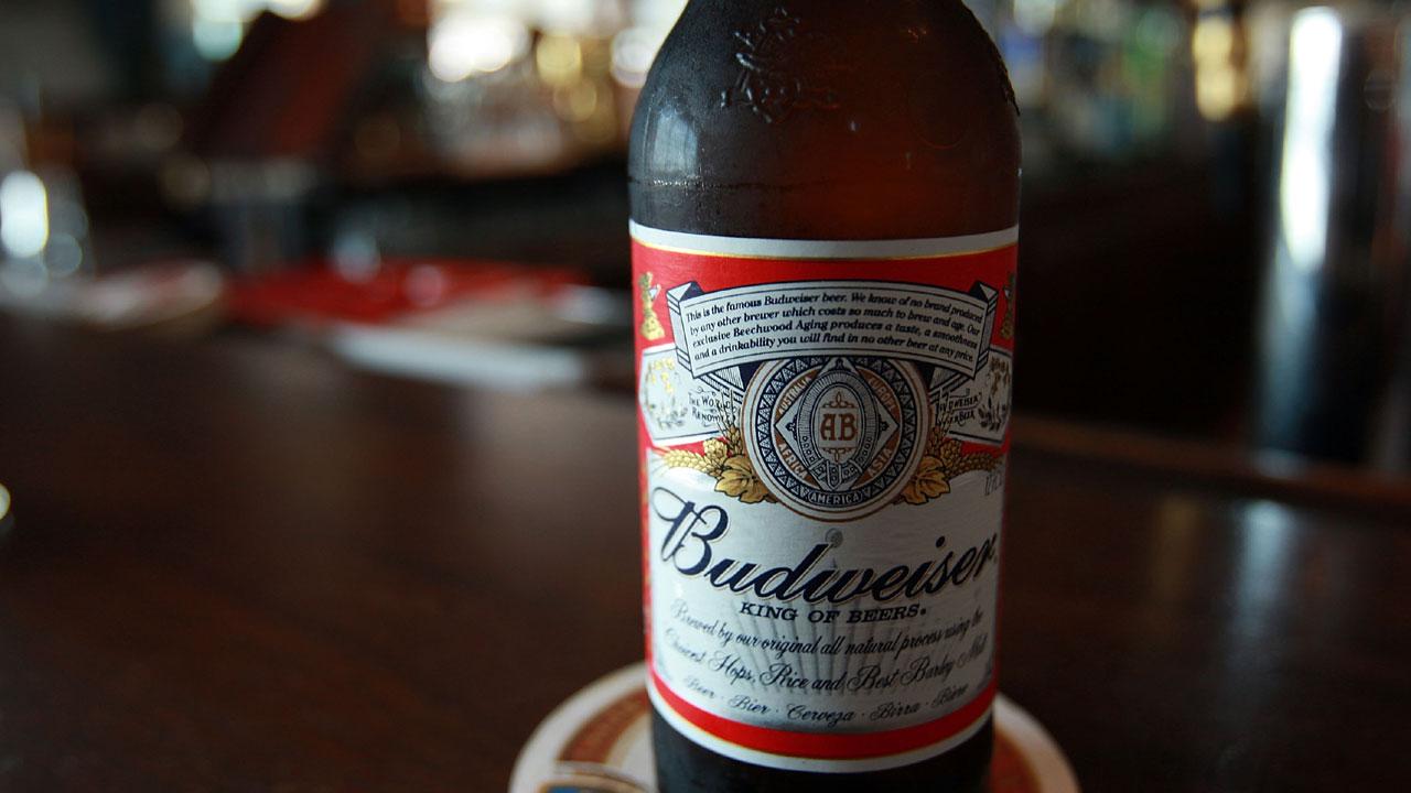 Budweiser beer bottle on bar36060431-159532
