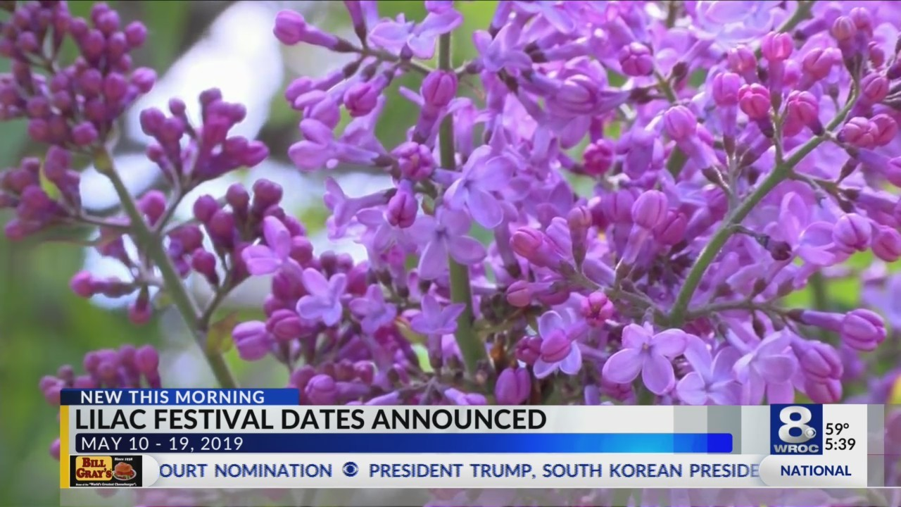 Lilac Festival 2019 dates announced