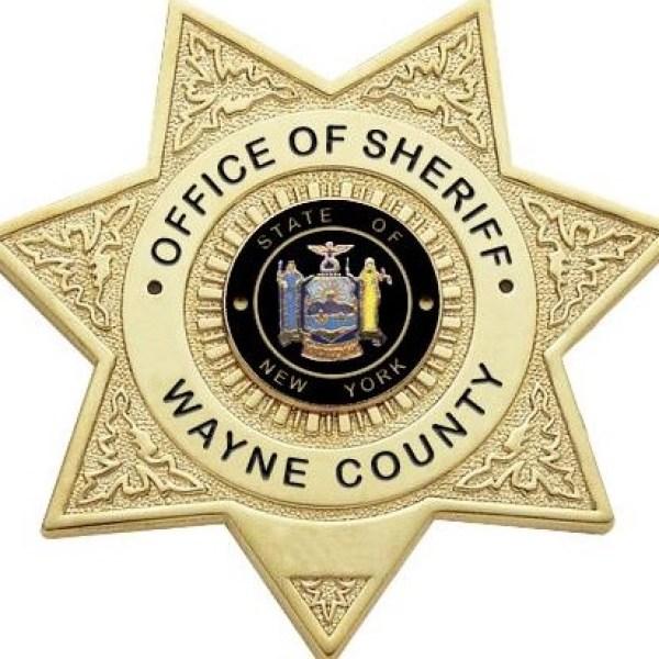 Wayne County Sheriff_1526847378231.jpg.jpg