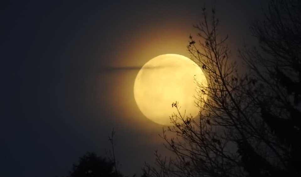 supermoon ‎Marchelle Vianese_1550604124053.jpg.jpg